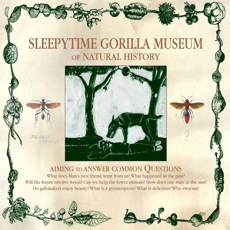 The donkey-headed adversary of humanity opens the discussion – SLEEPYTIME GORILLA MUSEUM