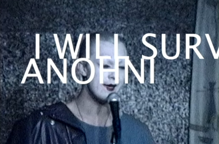 I will survive – ANOHNI